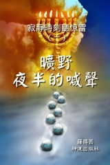 A Cry Made in Midnight Desert (Classified Chinese)