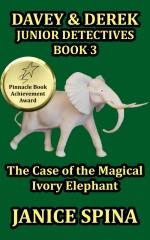 Davey & Derek Junior Detectives Series Book 3