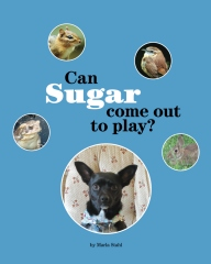 Can Sugar Come Out to Play?