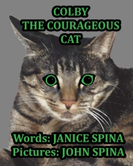 Colby the Courageous Cat