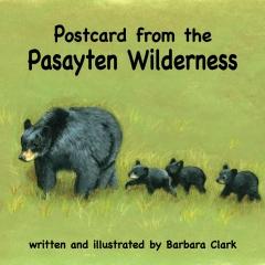 Postcard from the Pasayten Wilderness