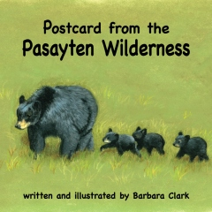 Postcard from the Pasayten Wilderness