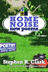 Home Noise