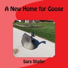 A New Home for Goose