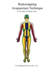 Bodymapping acupuncture technique