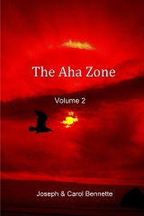 The Aha Zone - Volume 2