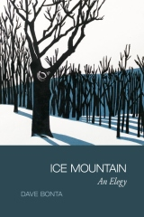 Ice Mountain: An Elegy