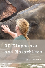 Of Elephants and Motorbikes