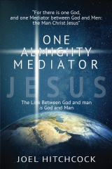 One Almighty Mediator - Jesus