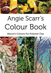 Angie Scarr's Colour Book