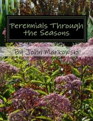 Perennials Through the Seasons