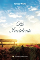 Life Incidents