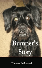 Bumper's Story