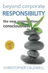 Beyond Corporate Responsibility