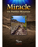 Miracle on Panther Mountain