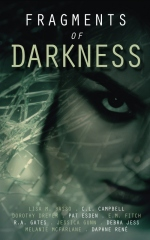 Fragments of Darkness
