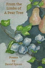 From the Limbs of a Pear Tree
