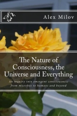 The Nature of Consciousness, the Universe and Everything