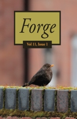 Forge 11.1