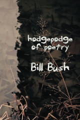 Hodgepodge of Poetry